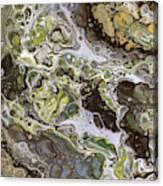 Desert Arroyo 2 Canvas Print