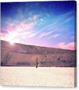Desert Stars Canvas Print