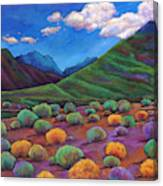 Desert Valley Canvas Print