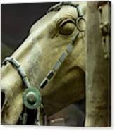 Details Of Head Of Horse From Terra Cotta Warriors, Xian, China Canvas Print
