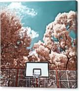 Digital Infrared Photos Canvas Print