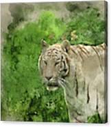 Digital Watercolor Painting Of Beautiful Portrait Image Of Hybri Canvas Print