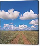 Dirt Road On Prairie With Cumulus Sky Canvas Print