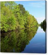 Dismal Swamp Canal In Spring Canvas Print