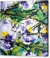 Divineblooms22040 Canvas Print