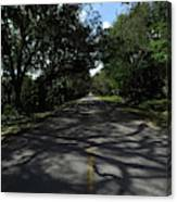 Dixie Highway In Micanopy Florida Canvas Print