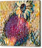 Dizzy Daisy Canvas Print