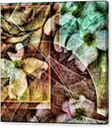 Dogwood Abstract Canvas Print