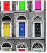 Doors Of Dublin - Vertical Canvas Print
