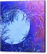 Dream By The Tropical Moon Canvas Print
