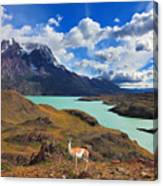 Early Autumn In Patagonia. National Canvas Print