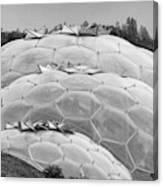 Eden Project Biome  Canvas Print