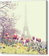 Eiffel Tower With Tulips Canvas Print