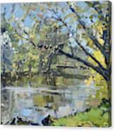 Ellicott Creek Park Canvas Print