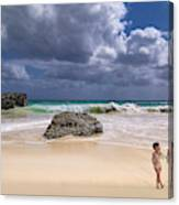 Endless Summers Canvas Print