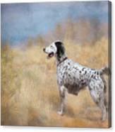 English Setter Dog Canvas Print