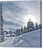 Escape From Beaver Creek Canvas Print