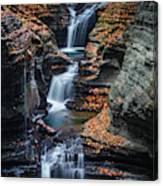 Every Teardrop Is A Waterfall Canvas Print