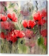 Everything About Poppies Canvas Print