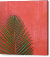 Exotic Background Canvas Print