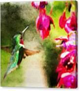 Eye On The Fuchsia Canvas Print