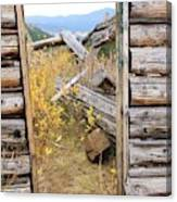 Fall Door 2 Canvas Print