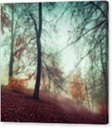Fall Feeling Canvas Print