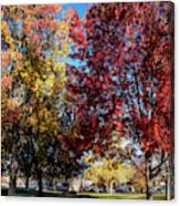 Fall In Wenatchee Canvas Print