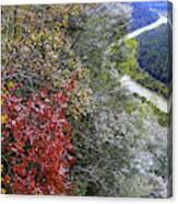 Fall Meets Winter Canvas Print