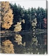 Fall Mirrors 2 Canvas Print