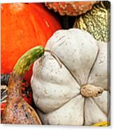 Fall Season Squash And Pumpkins Canvas Print