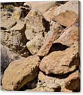 Fallen Sandstone Boulders Canvas Print