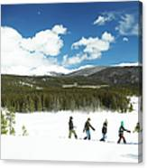 Family Carrying Christmas Tree In Forest Canvas Print