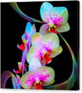Fantasy Orchids In Full Color Canvas Print