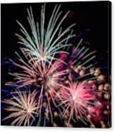 Fireworks 2019 One Canvas Print