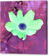 Flower 2918 Canvas Print