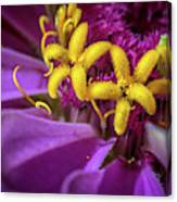 Flowers Within Flowers Canvas Print