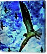 Flying Seagulls Canvas Print