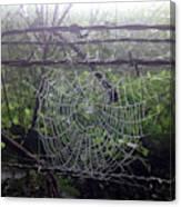 Foggy Web Canvas Print