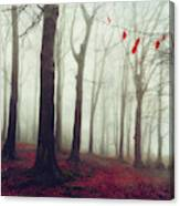 Forest In December Mist Canvas Print