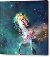Free Of The Carousel Canvas Print