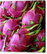 Fresh Dragon Fruit For Sale In A Thai Canvas Print