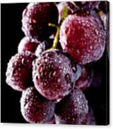 Fresh Grapes With Drops Canvas Print