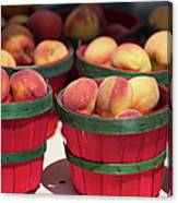 Fresh Texas Peaches In Colorful Baskets Canvas Print