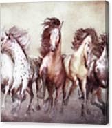 Galloping Horses Magnificent Seven Canvas Print