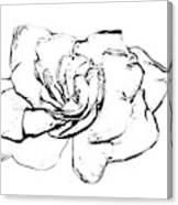 Gardenia Paint My Sketch Canvas Print