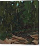Gargantua Harbour Brook Canvas Print