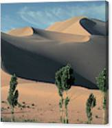 Mountains Of Singing Sand Canvas Print