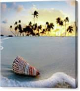 Gili Shell Canvas Print