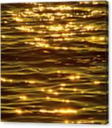 Gold Sea Canvas Print